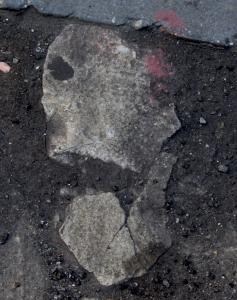 Ghoul 7 skull