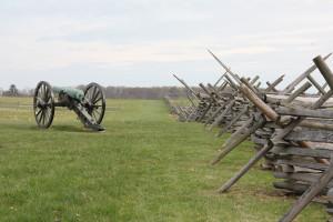 Fence bayonet